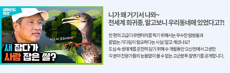 오산천 희귀종 촬영 고군분투
